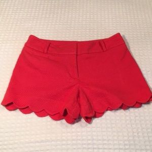 Loft outlet scallop dark pink shorts
